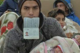 Беженцы из Сирии голодают у парламента Греции