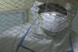 Эпидемию чумы подтвердили на Мадагаскаре