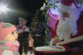 В израильской Яффе зажгли огни на рождественской ели