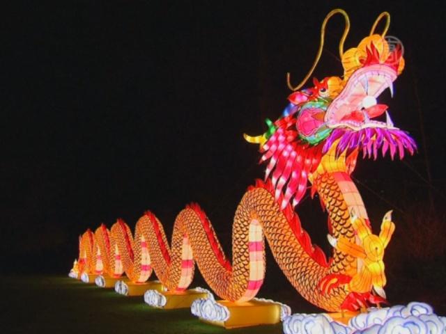 Бельгийский зоопарк украсили китайские фонари