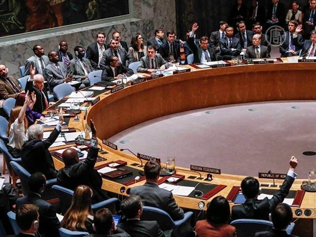 Резолюцию по Палестине отклонили в СБ ООН