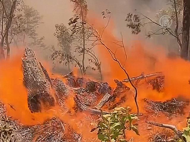 Пожар уничтожает дома на Аделаидских холмах