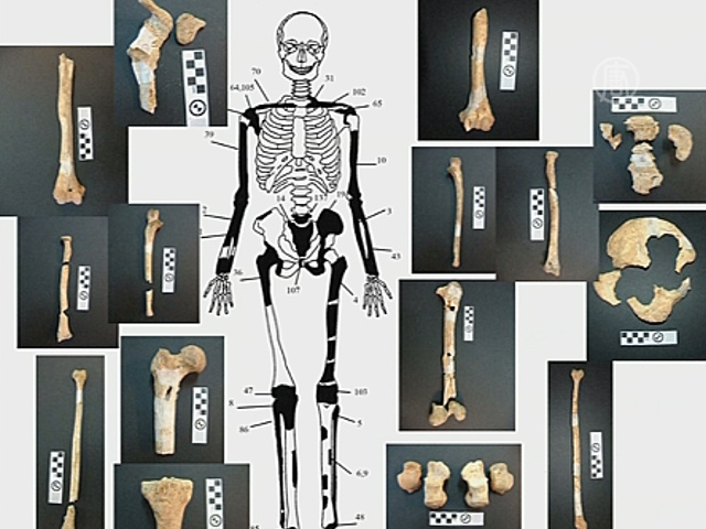 В гробнице Амфиполя найдены останки пяти человек