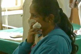 Индийцам угрожает свиной грипп