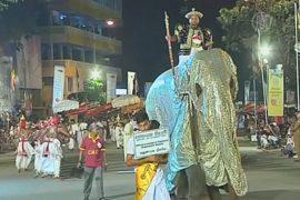 Украшенные слоны прошли по улицам Коломбо