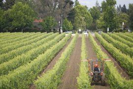Американские фермеры терпят убытки