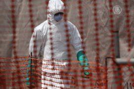 Эбола идёт на спад, но как восстановить экономику?