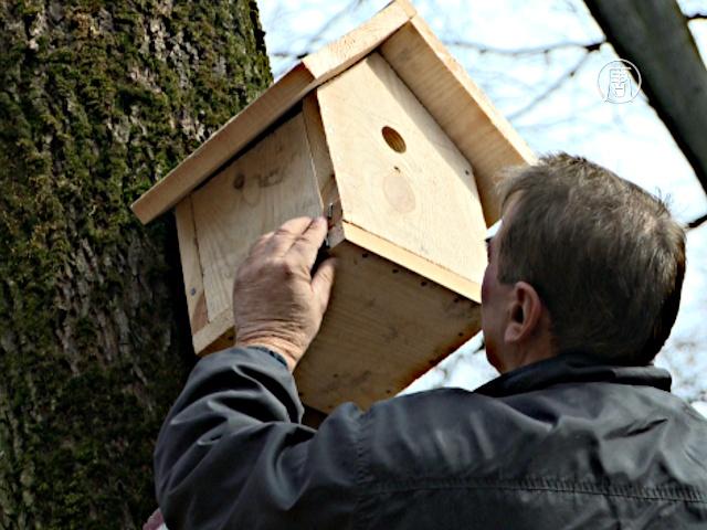 Экологи: как угодить птице с домиком