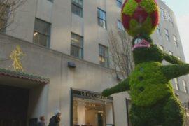 Цветочный пасхальный кролик облюбовал Манхэттен