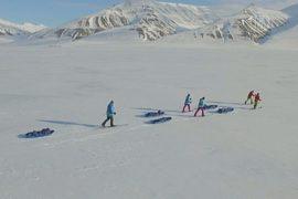 Подростки из Норвегии покоряют Северный полюс