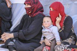 Мигранты рассказали, как бежали от войны