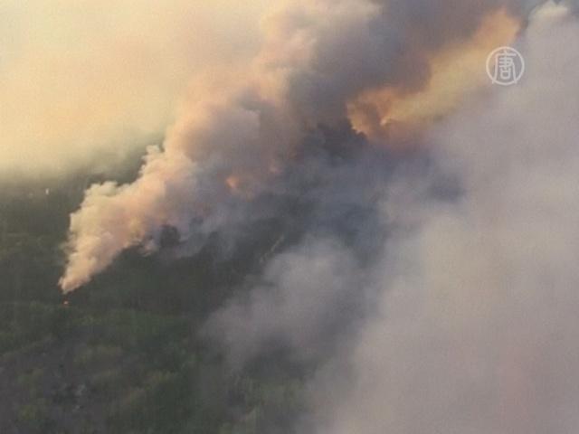 Лесной пожар в Чернобыле – под контролем