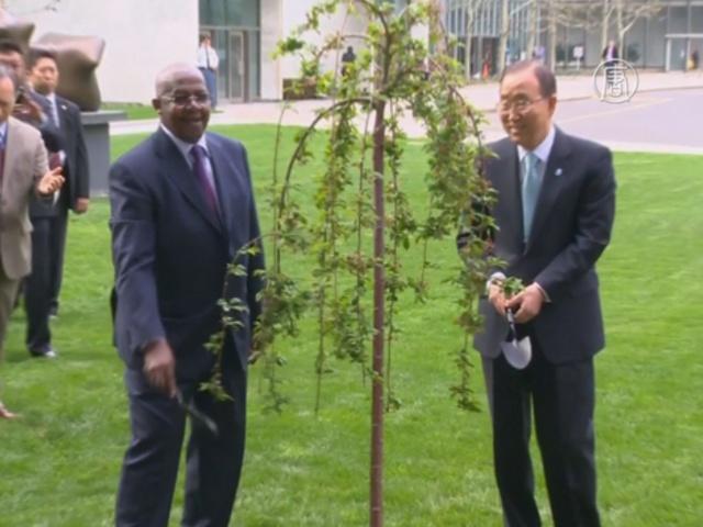 В ООН почтили память жертв Второй мировой
