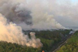 Пожар в Чернобыле: стоит ли бояться последствий