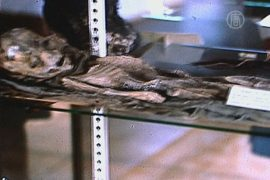 Уфологи показали фотографии пришельца