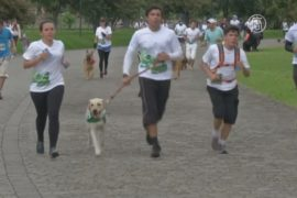 В Колумбии прошел марафон с собаками