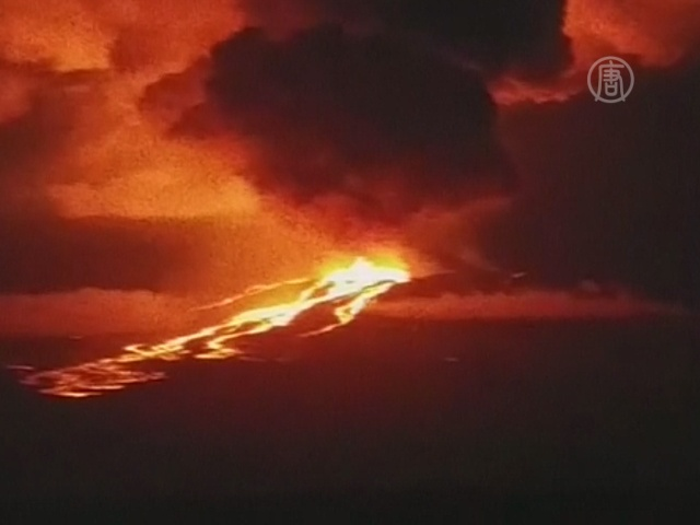 Вулкан на Галапагосах угрожает экосистеме