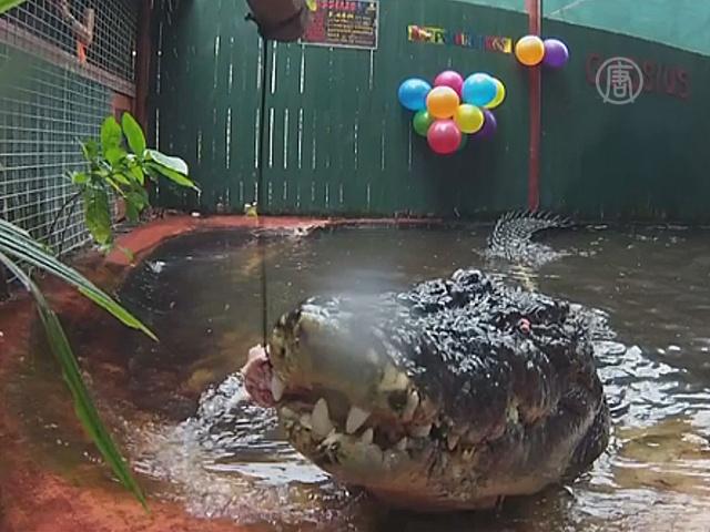 Самому старому крокодилу в мире исполнилось 112