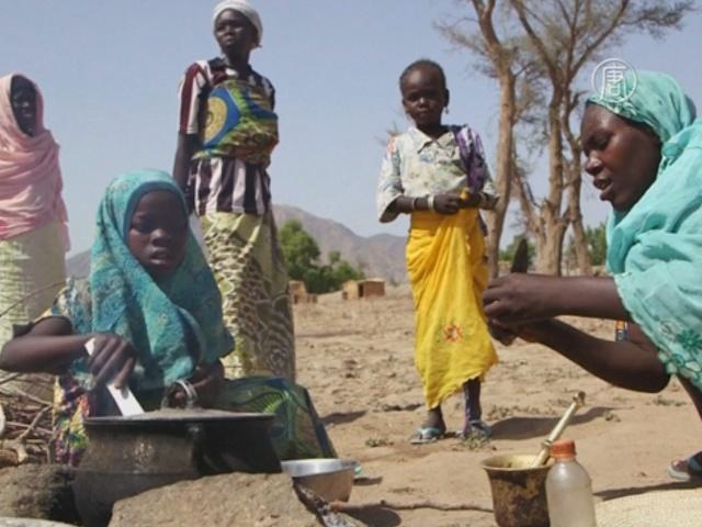 ООН: беженцам от «Боко харам» не хватает еды