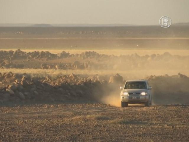 «Чёрная пустыня» Иордании когда-то была оазисом