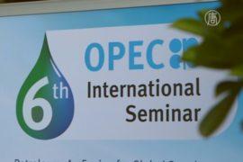 ОПЕК не намерена сокращать объёмы добычи нефти