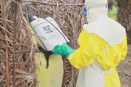 Эбола в Гвинее и Сьерра-Леоне не утихает