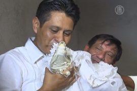 Индейский мэр женится на крокодиле ради урожая