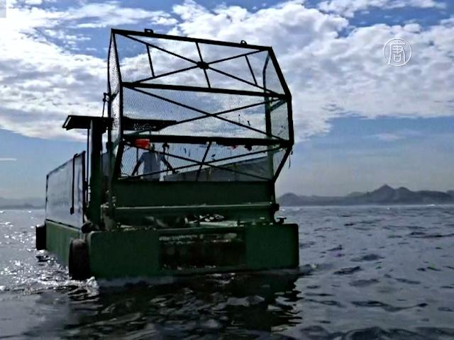 Экологичные лодки возобновили очистку Гуанабары