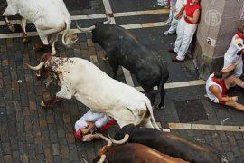 «Сан-Фермин»: быки ранили 11 человек