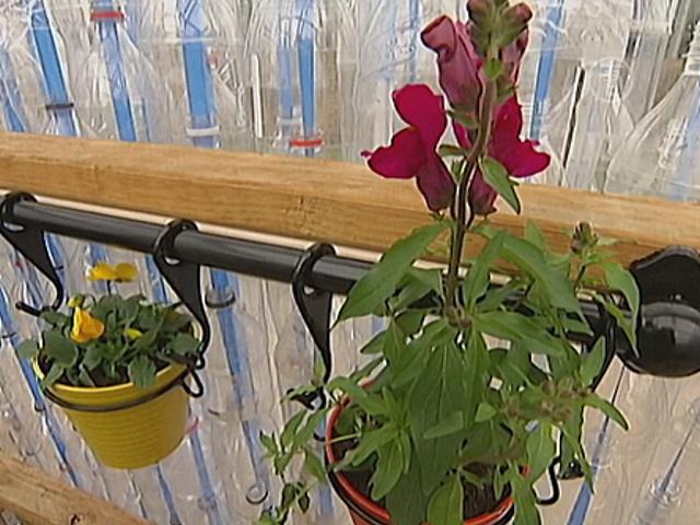 Школьники построили класс для ботаники своими руками