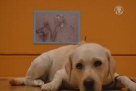 Собак пустили в музей