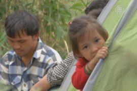 Из-за беженцев в Сербии — гуманитарная катастрофа