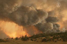 Север Калифорнии охватили лесные пожары