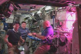Салат в космосе: астронавты устроили дегустацию