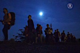 Ночной путь мигрантов из Сербии в Венгрию