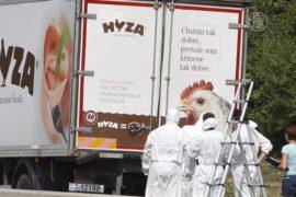 В Австрии нашли грузовик с телами мигрантов