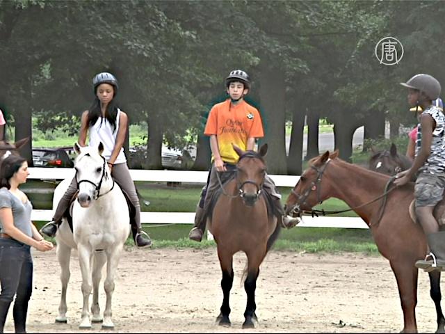 Лошади помогают детям из неблагополучного района