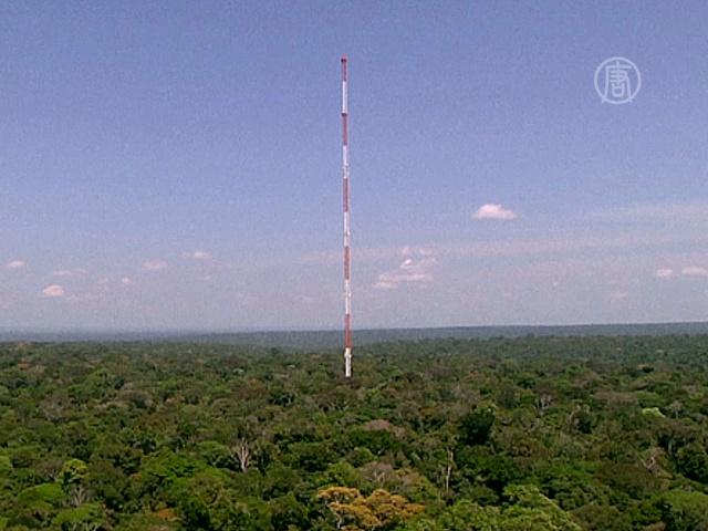 Башню для мониторинга климата построили в Амазонии