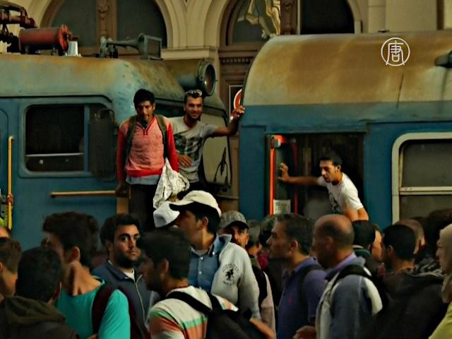 Мигранты продолжили штурмовать вокзал в Будапеште