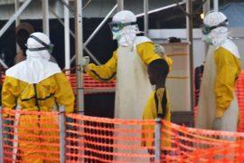 ВОЗ: эпидемию Эболы можно победить до конца 2015