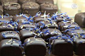 Как сделать шоколад самостоятельно – учили в Лондоне
