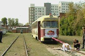 Россиянка протащила 17-тонный трамвай