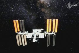 Космонавты прошли половину годового эксперимента