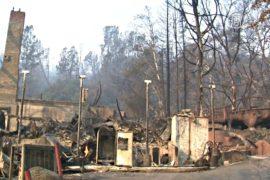 Пожары в Калифорнии уничтожили 600 домов