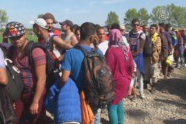 Поток мигрантов устремился через Хорватию