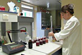 Франция: розовое вино изучают и улучшают