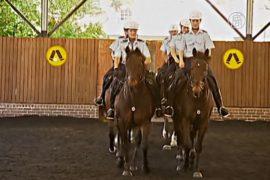 Конной полиции Сиднея – 190 лет
