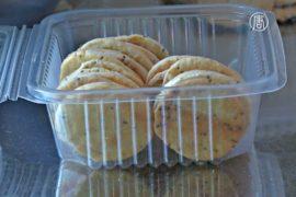 Печенье из дождевых червей полюбилось боливийцам