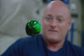 Астронавты испытали на МКС новейшую видеокамеру
