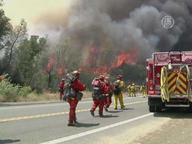 США: к тушению пожаров хотят привлечь преступников